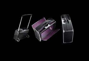 Cea mai scumpa valiza din lume- Henk